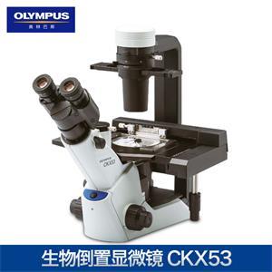 奧林巴斯CKX53倒置生物顯微鏡