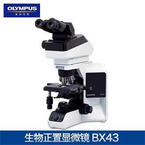奧林巴斯生物顯微鏡BX43顯微鏡